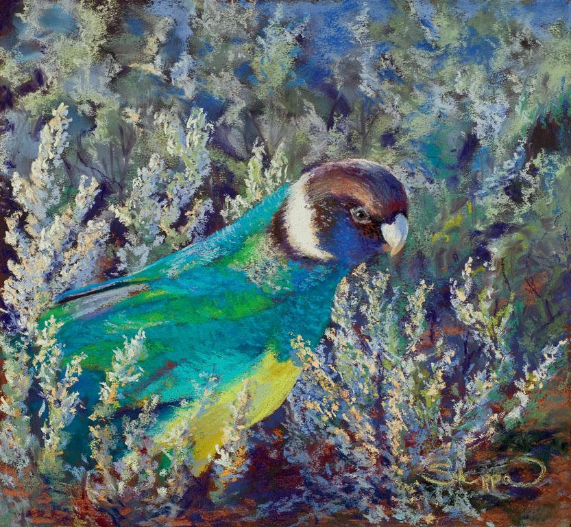 Parrot & Smoke Bush