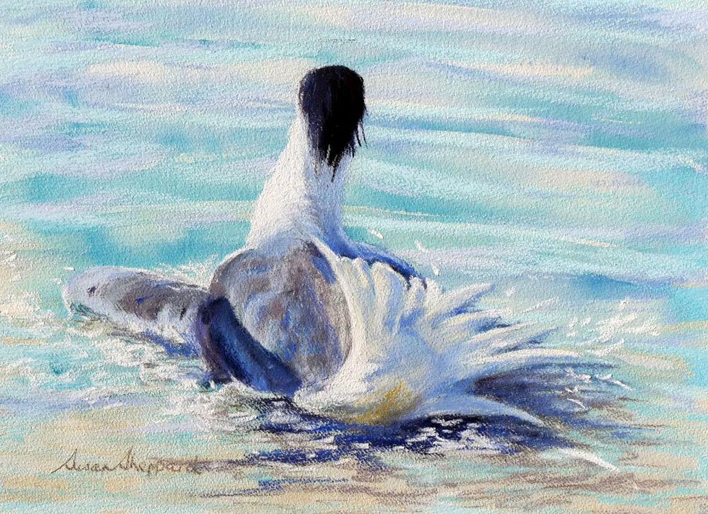 Tern For A Bath II