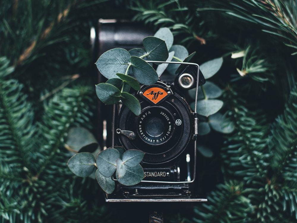 - photography