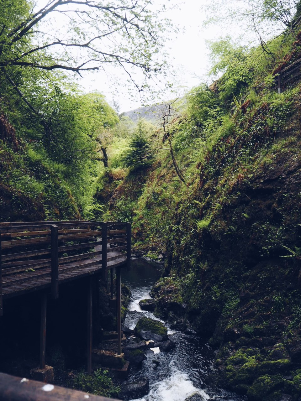 Glenariff Nature Reserve & Waterfalls Walk