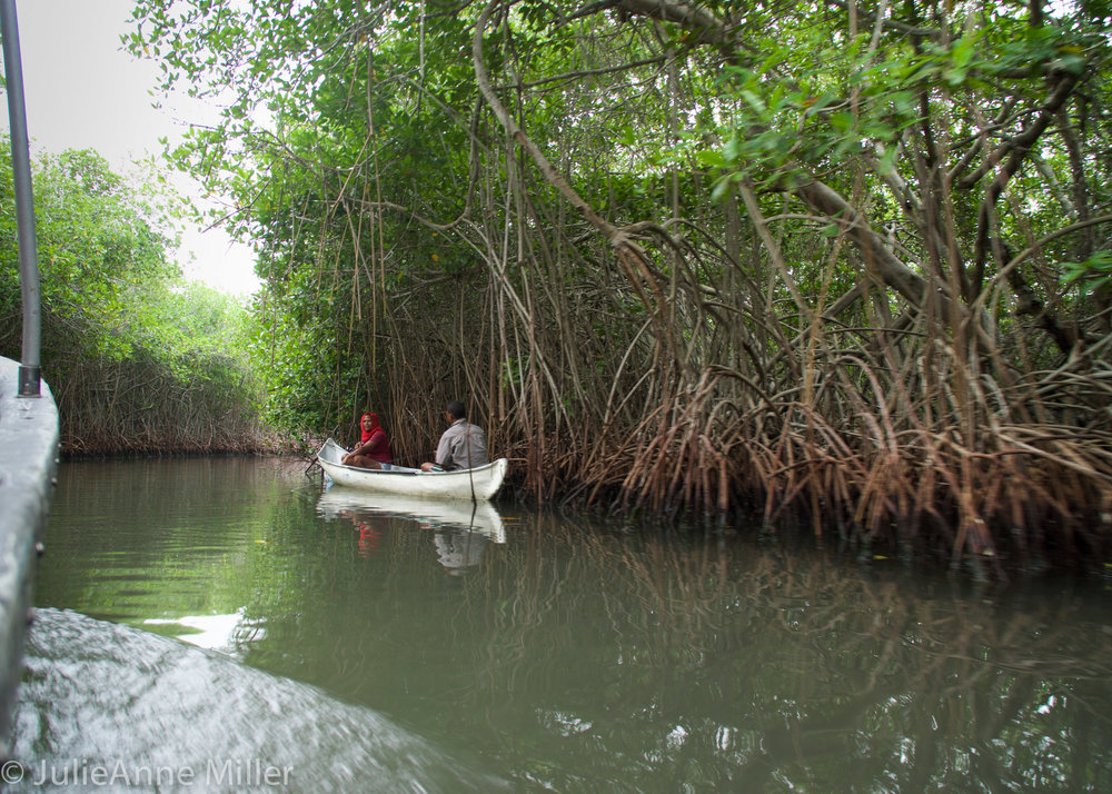 couple in canoe.jpg