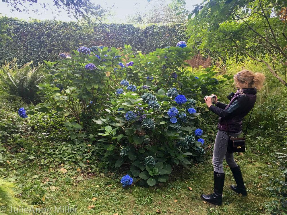 usher garden J.jpg