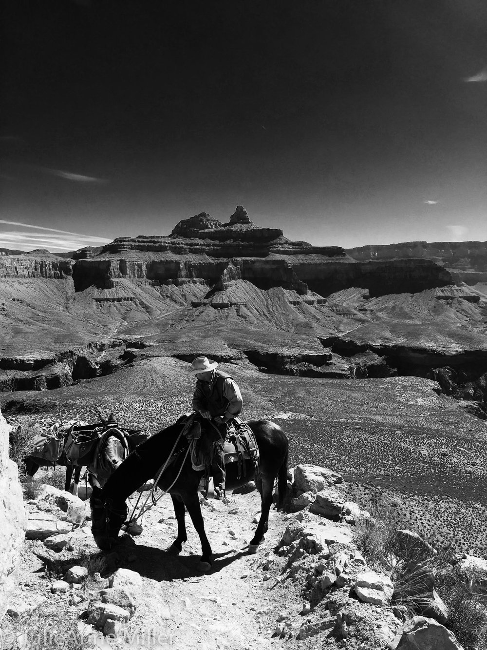 Grand Canyon BW cowboy.jpg