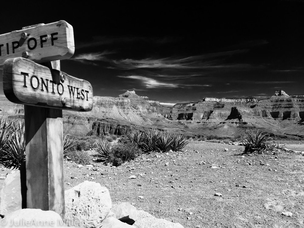 Grand Canyon BW Tonto West.jpg