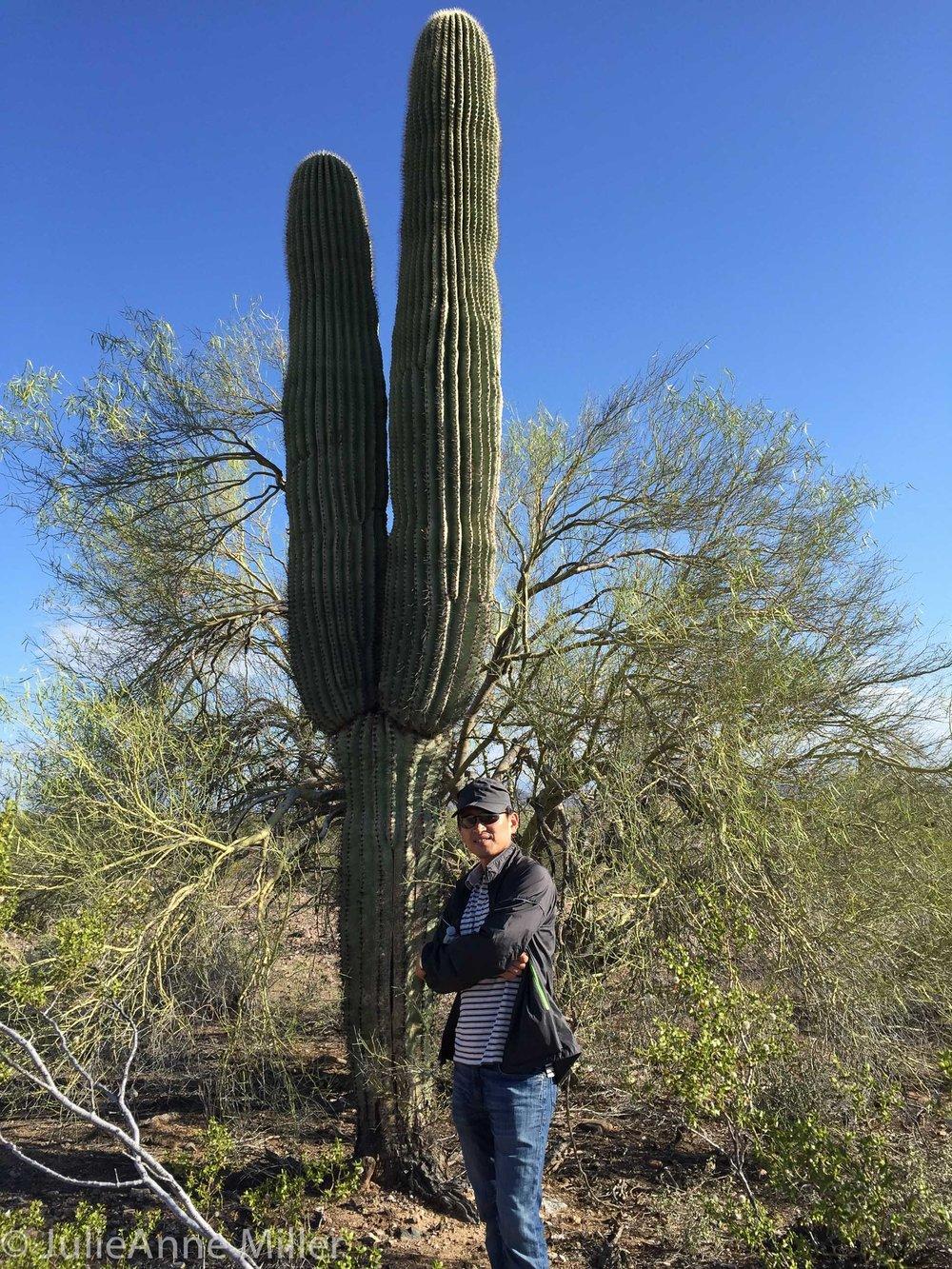 C and cactus.jpg
