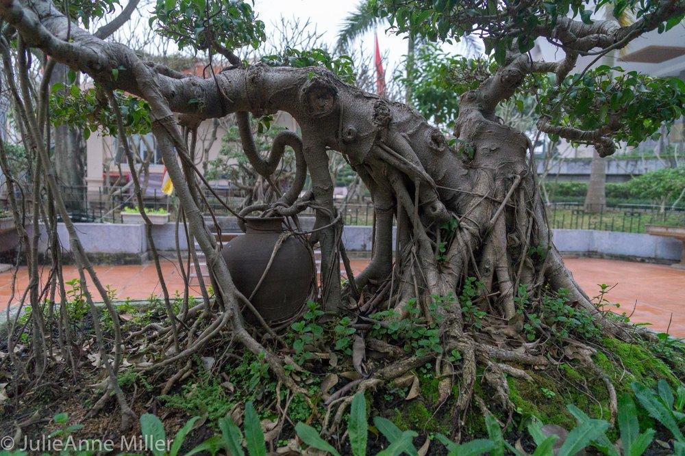 Hanoi-5-2.jpg