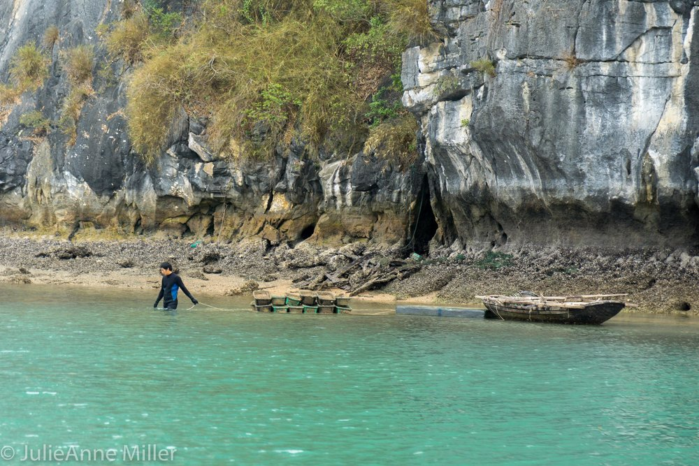 Cat Ba Seafood Farmer