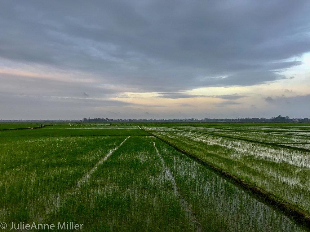 Hue Rural-2.jpg