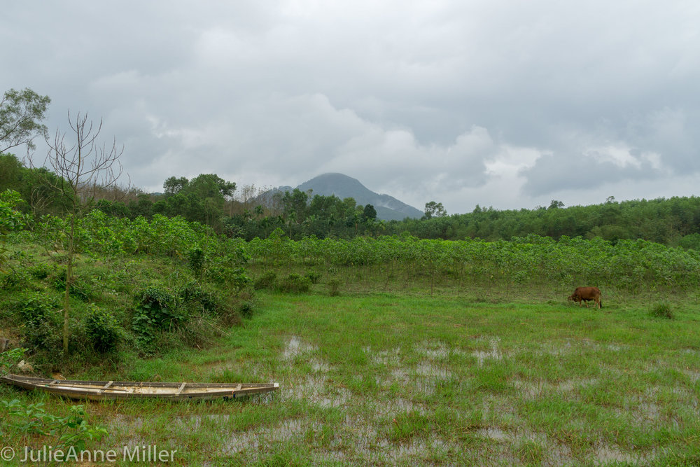 Hue Rural-9.jpg