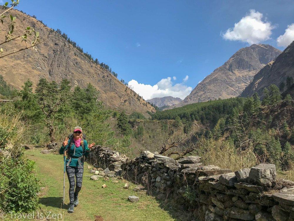 cheery in Ghasa