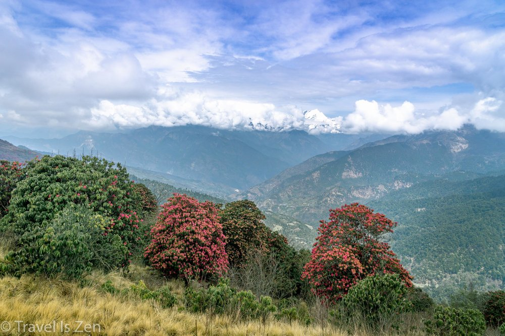 Annapurna Circuit-144.jpg