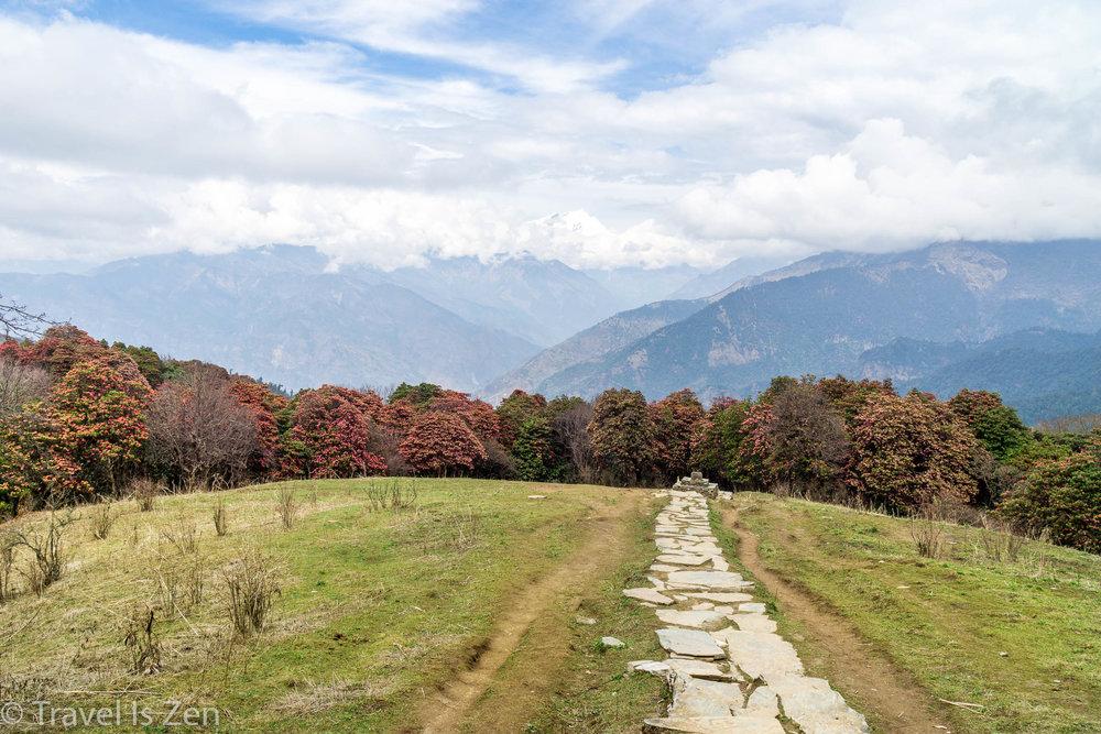 Annapurna Circuit-147.jpg