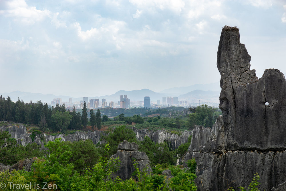 Stone Forest-7.jpg