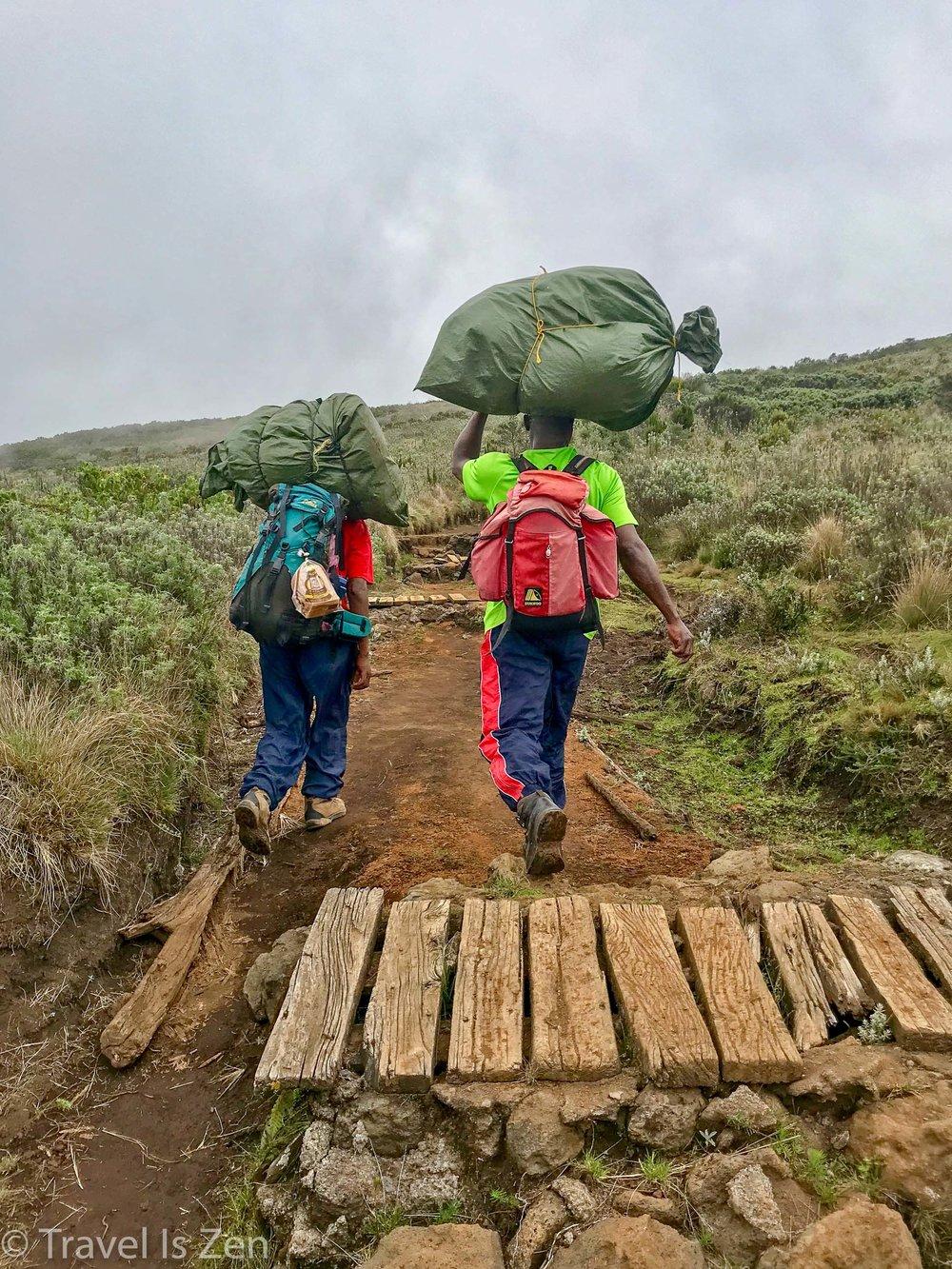 Kilimanjaro-24.jpg