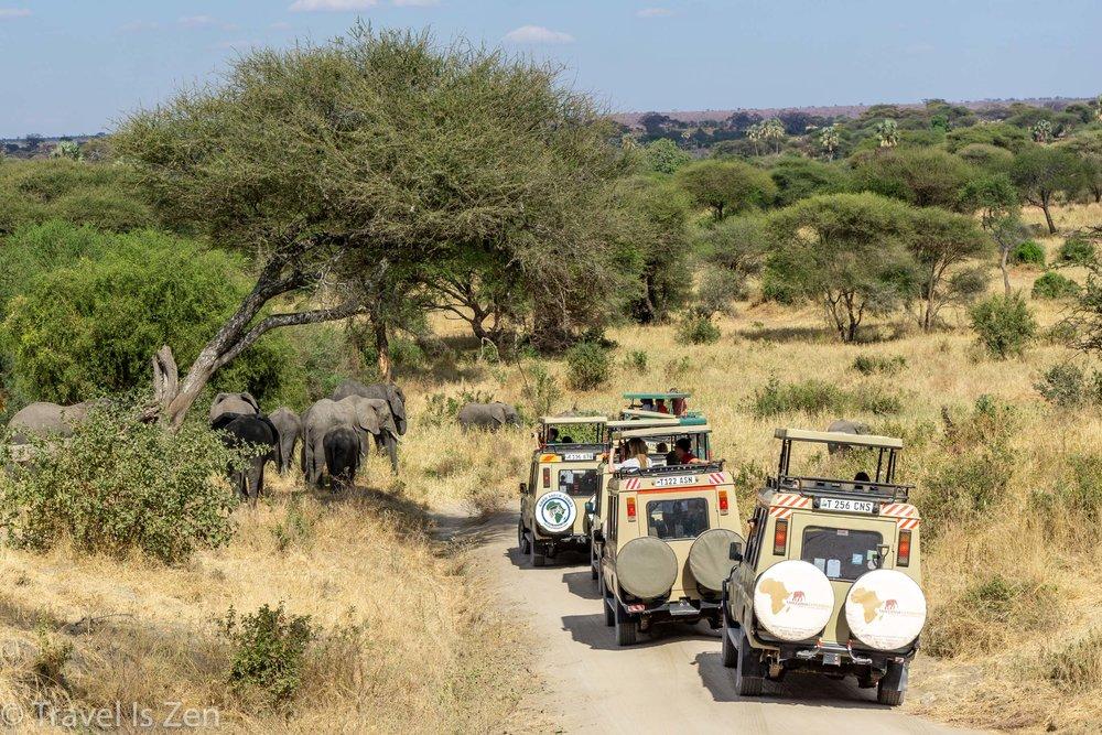 Tanzania Safari-3.jpg