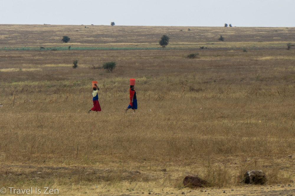 road to safari-5.jpg