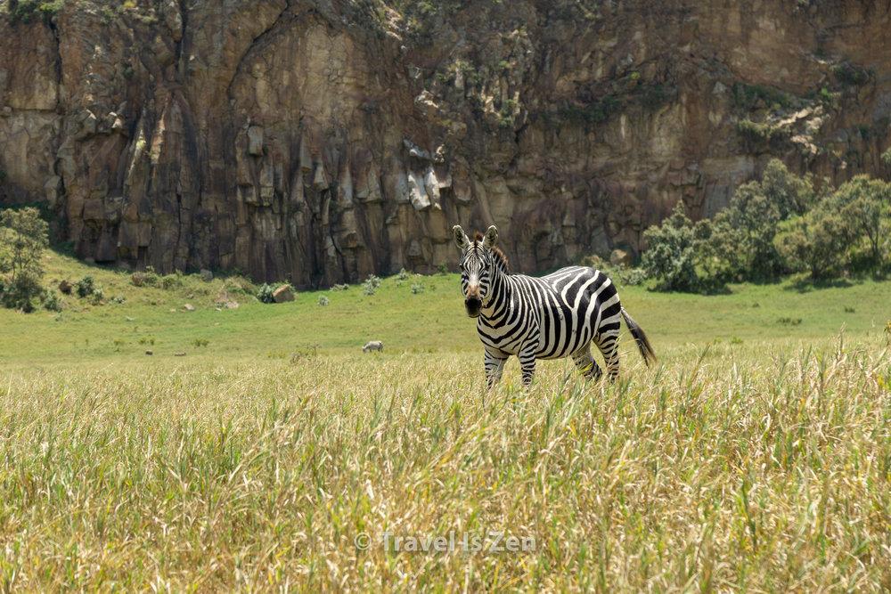 Hells Gate Kenya-3.jpg