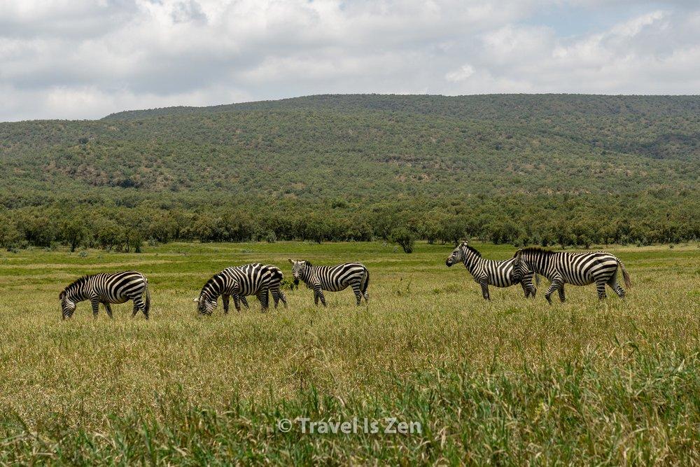 Hells Gate Kenya-9.jpg