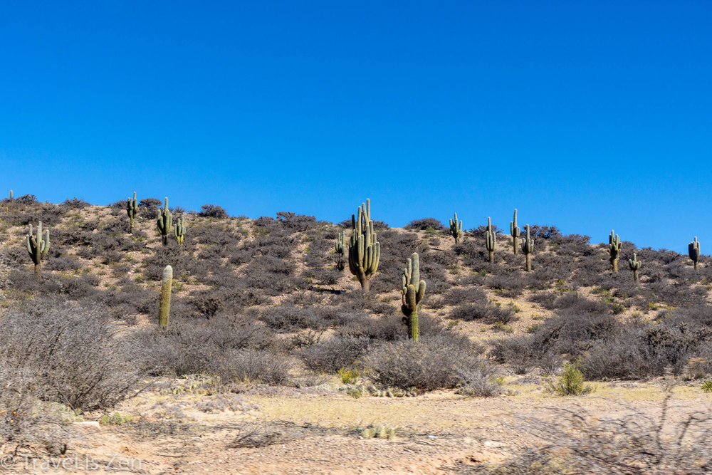 desert scene along Quebrada de Humahuaca, Jujuy Province, Argentina