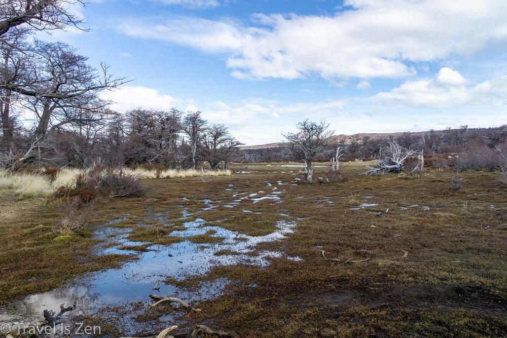 Patagonia Loma del Pliegue Tombado-12.jpg