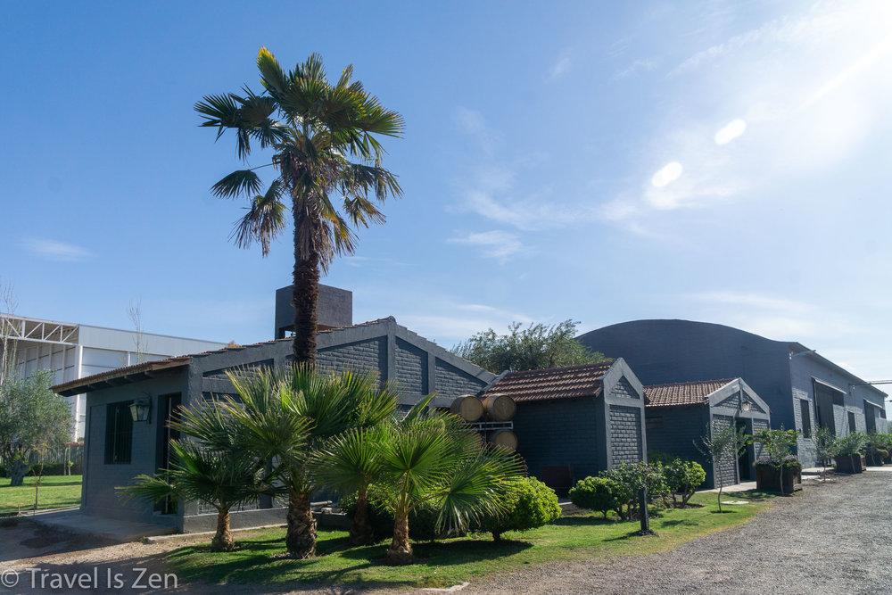 Mendoza-15.jpg