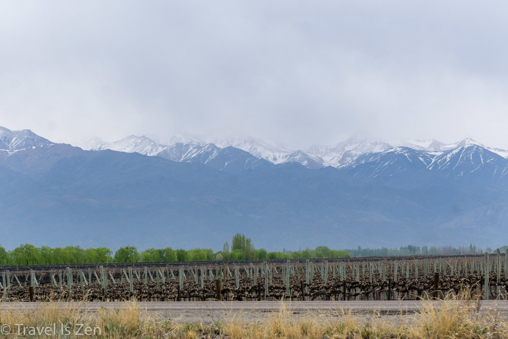 La Azul Bodega, Uco Valley, Mendoza Province, Argentina