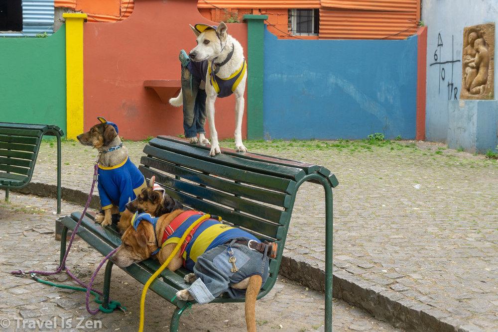 Buenos Aires La Boca-4.jpg