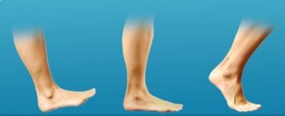 Big toe extending and flexing as we walk