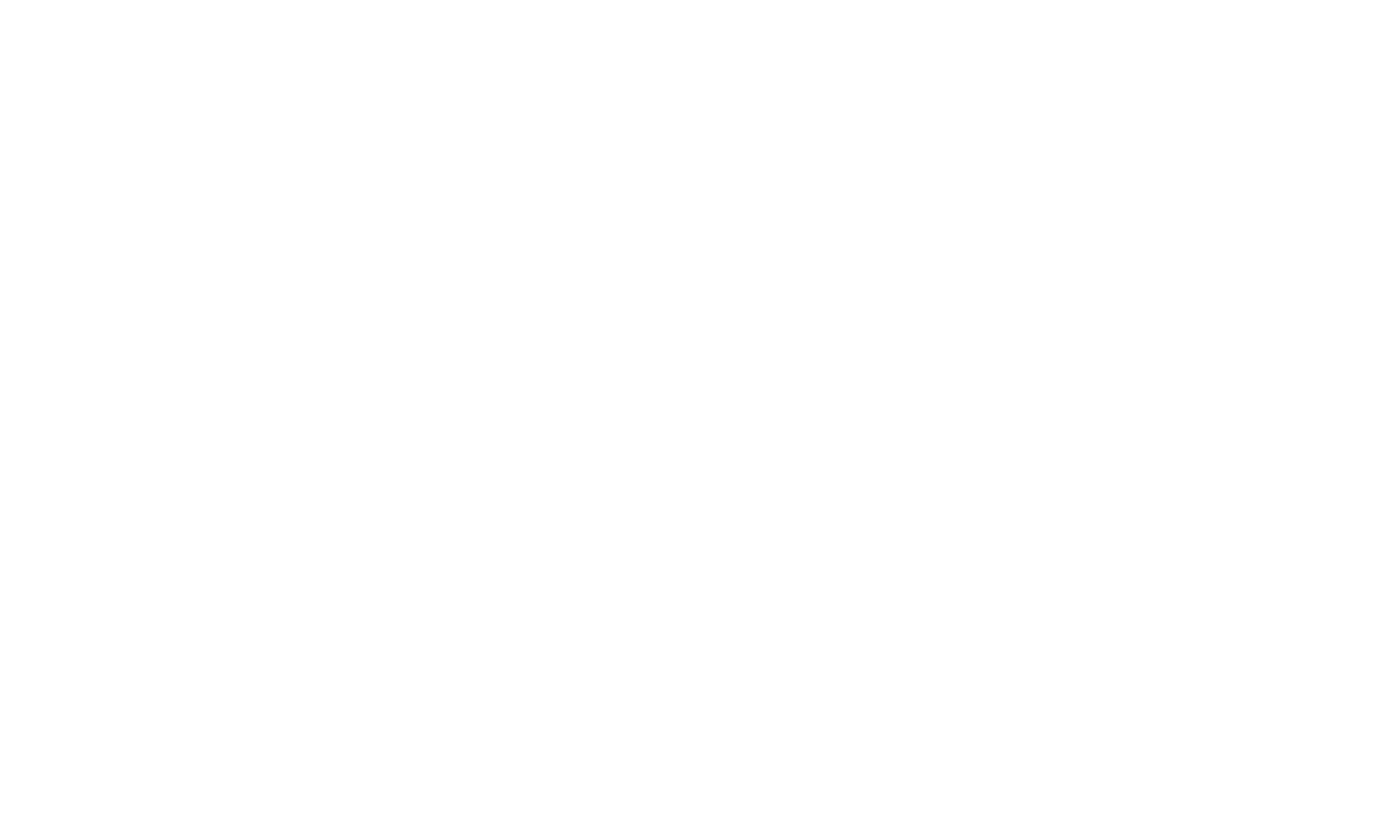 Princeton Racing Electric