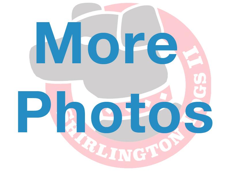 MorePhotosSign.jpg