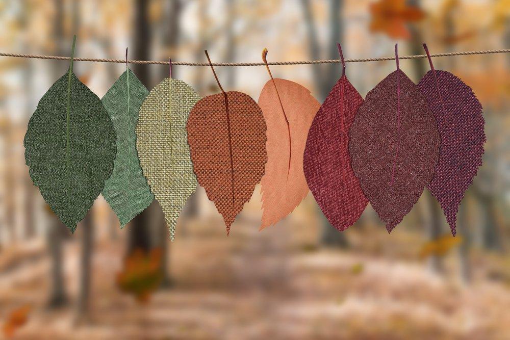 DTcoloredleaves.jpg