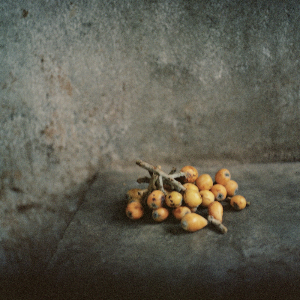 13.berries.jpg
