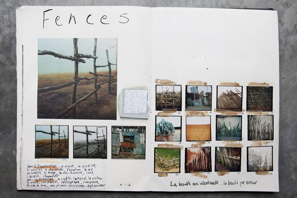 2.fences.jpg