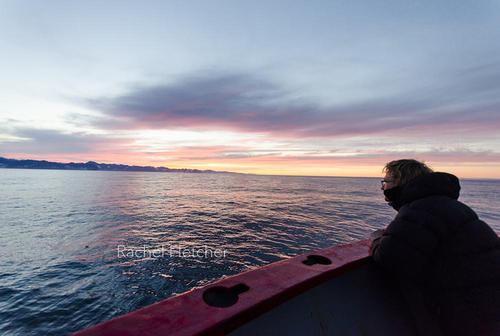 Pulling into Ísafjörður, Iceland at sunrise
