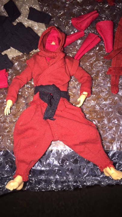 ninja 01.jpg