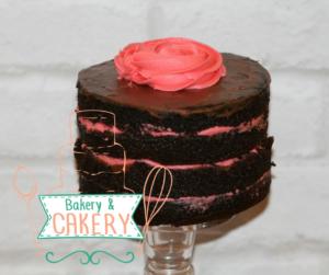 sugar-and-crumbs-raspberry-ripple-choclate-cake