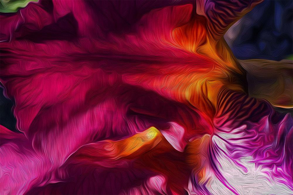 Iris Reduction 4X6.jpg