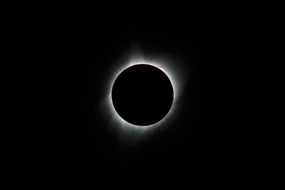 20170821-TA__1113.jpg