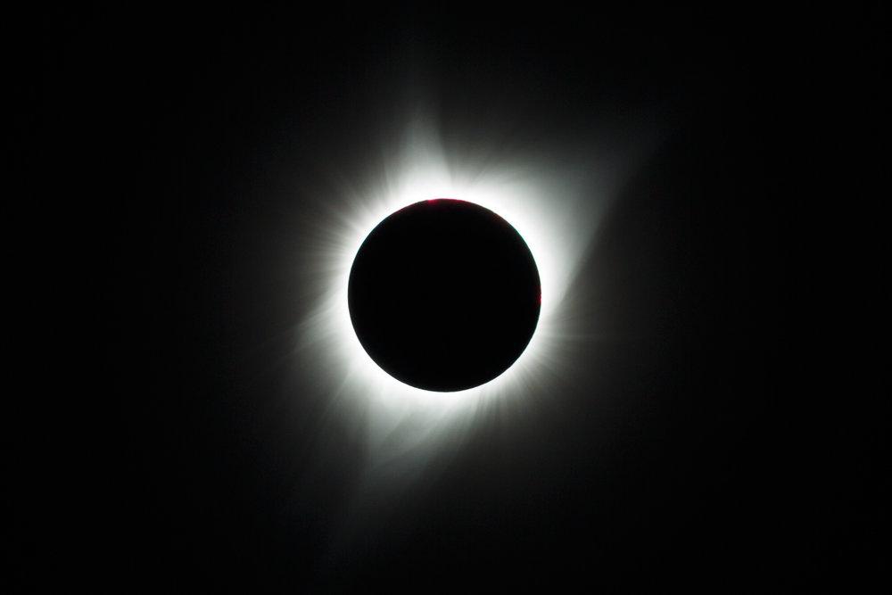 20170821-TA__1110.jpg