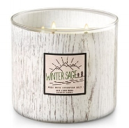 bath_and_body_works_winter_sage_candle.jpg