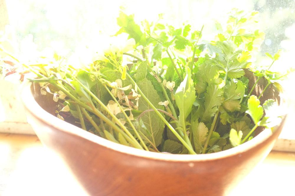 herbsbowl2