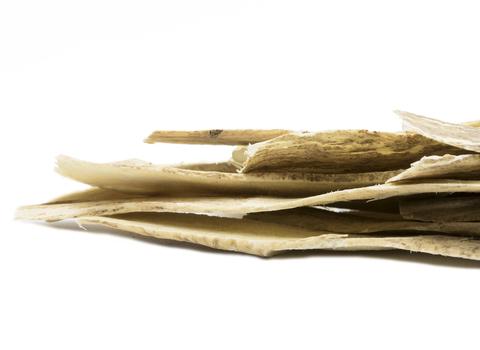 Astragalus Slices