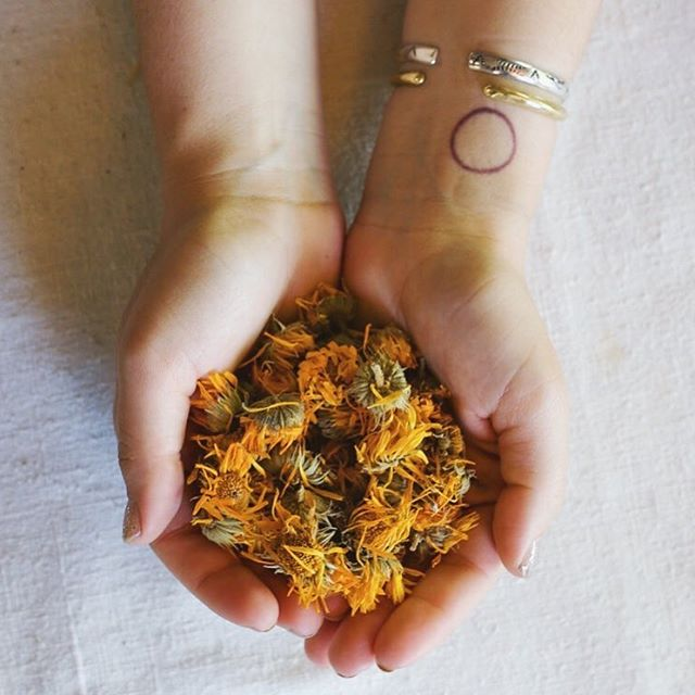 Join us tomorrow at 6PM for a *free* talk at @westcountyherb. We'll be going over all our favorite foods and herbs to stay well and grounded this spring season. You'll learn how to easily incorporate warming adaptogens, nervines, and mineral rich herbs into everyday meals.🌿✨📸: @ally.crum
