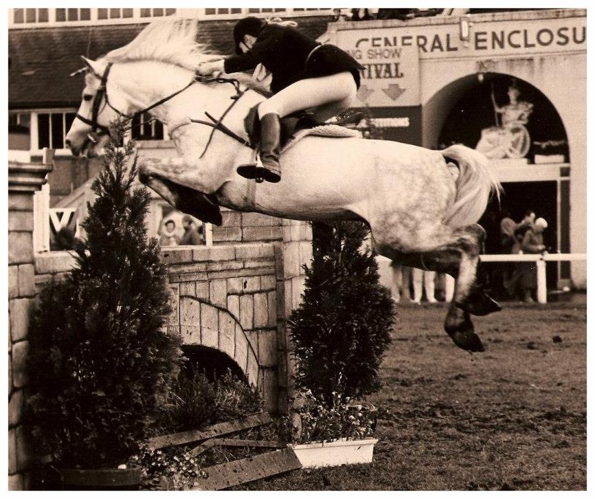 Grange Jumping at Dublin.jpg