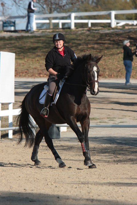 megans horse 2.jpg