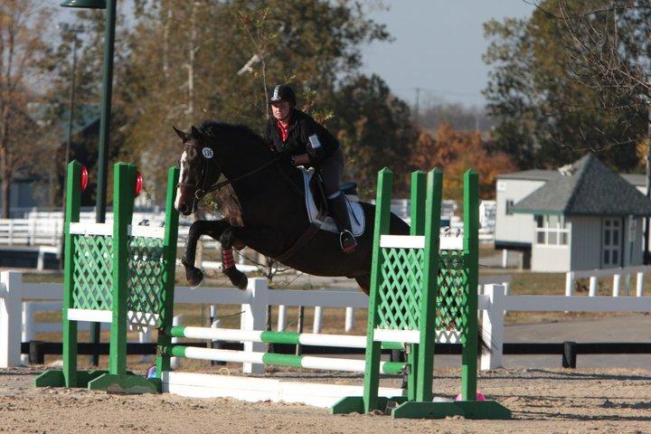 Megans horse 4.jpg