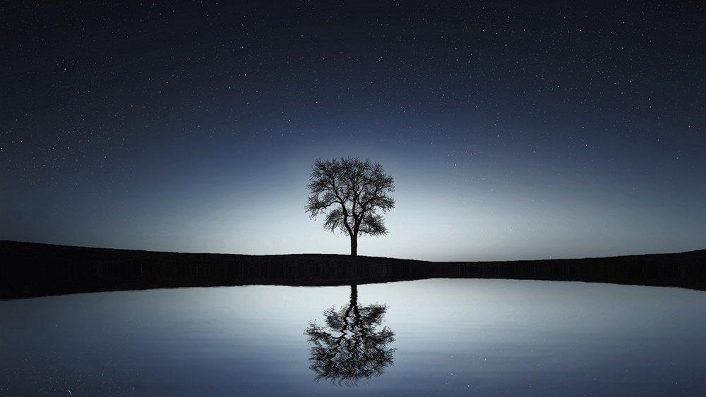 Reflection 2.jpeg