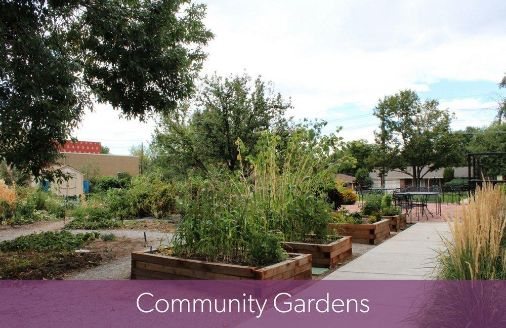 Community Gardens Pic for Website.jpg
