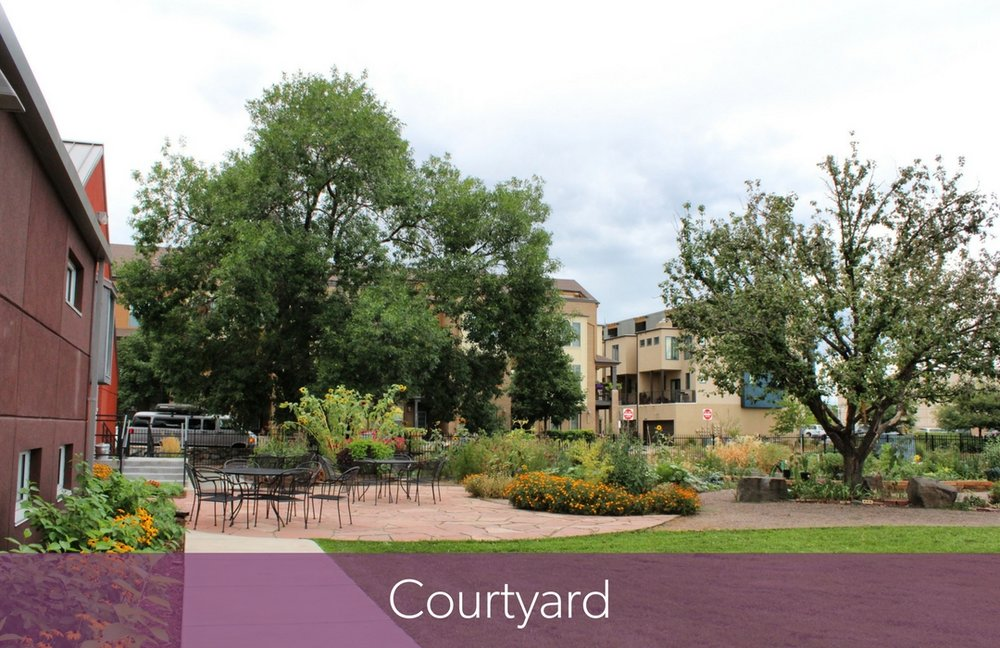 Courtyard Pic for Website.jpg