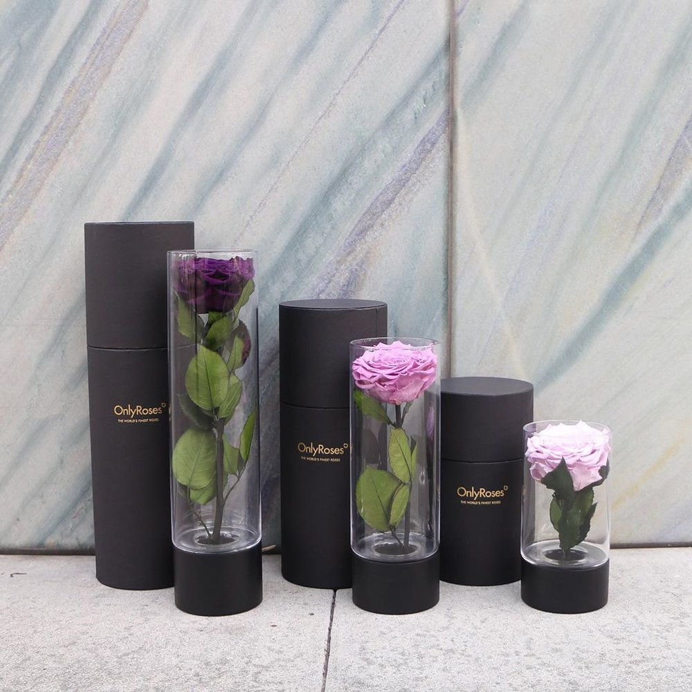 $115 InfiniteRose Ebony - A simple yet gorgeous gift. Their presentation box not only travels well but will impress anyone who is lucky enough to receive it.
